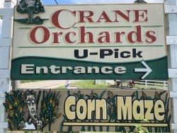 Crane Orchards Upick and Corn Maze