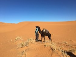 Camel ride on 2nd day