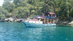 Freddys Daily Boat Trip