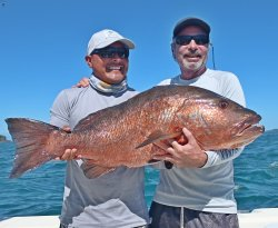 Absolutely the best in Panama for sports fishing