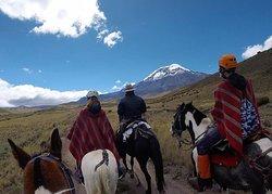 Tur Naik Gunung & Berkemah