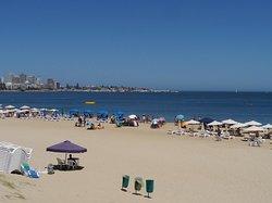 Punta del Este (301721324)