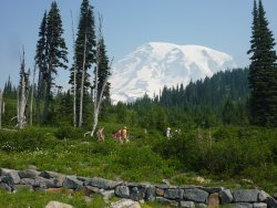 Hikers beginning from the Visitor Center in Paradise