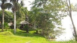 Un paraíso en la selva / A paradise in the jungle