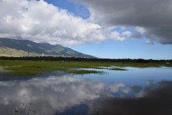 Kealia Pond National Wildlife Refuge