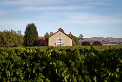 Etude Winery