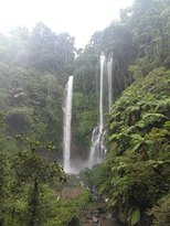sekumpul waterfall (302082524)