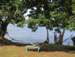 Sierpe River Camp
