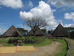 Ruteng Pu'u Village