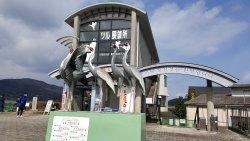 Izumi City Crane Center