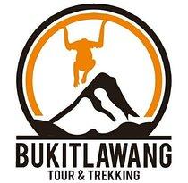 Bukit Lawang Guide