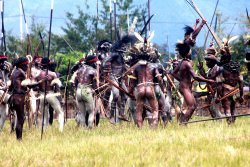 Jefalgi Papua Tours