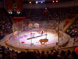 Krasnodar State Circus