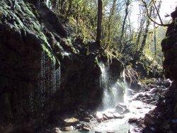 Weeping Rocks Waterfall