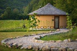 Linden Tree Retreat & Ranch