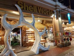 Shell World Museum