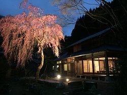 Guesthouse Suginoko