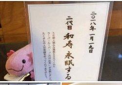 ミスチルの桜井和寿さんの名前を付けたペットの看板