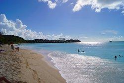 Jolly Beach