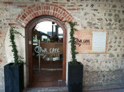 Owl Cafe Italy