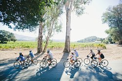 Sonoma Valley Bike Tours & Rentals
