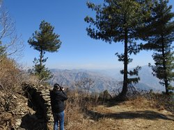 A genuine slice of pure Himachali village style hospitality