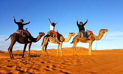 Morocco Desert Travels Day tours