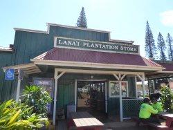 Lanai City Service