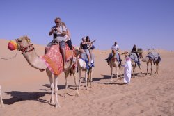 Arab Land Adventure Tourism