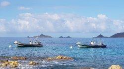 Plongée à Ajaccio - Les Iles Sanguinaires