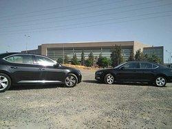Estela Cars