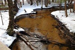 McCune Nature Preserve