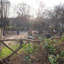 Merrion Square Park Playground