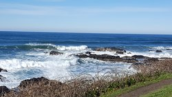 Yachats State Park