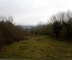 Mooghaun Hill Fort