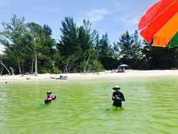 Nature Coast Excursions