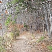 Sandy Creek Park Trail