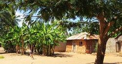 Love Zanzibar