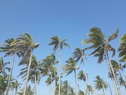 Remote Paradise!