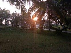 Best of island