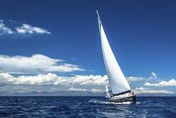 Chesapeake Windsail Cruises