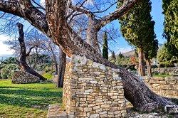 Biblical Garden Stomorija