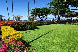 ハワイの雰囲気が良く出ているfine hotel!