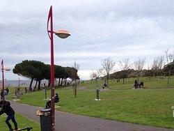 Parque Cotolino