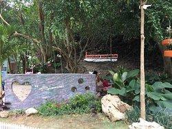 Khao Sam Bat Cave