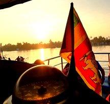 Sri Lanka Whales Marriot Cruise