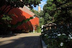 Telemedellin Canal Parque
