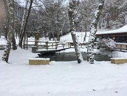 Restaurant et étangs sous la neige