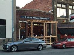 Casual Animal Brewing