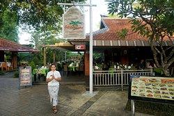 Coco Bistro Bali Collection